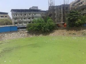Odor Control in India