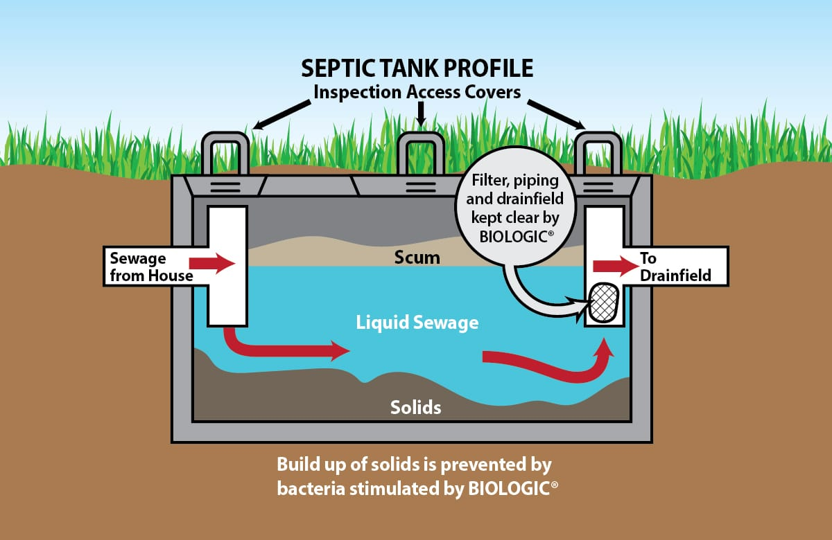 Clean Septic Systems Scicorp