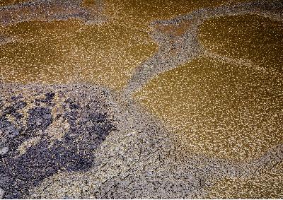 Wastewater Lagoon Sludge