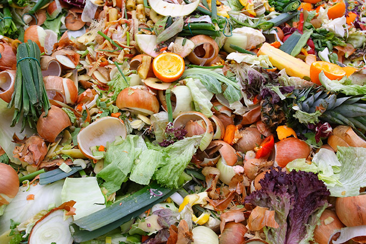 Foodwaste and Other Organic Waste